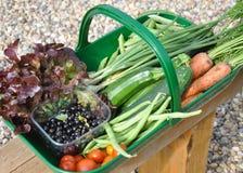 Trug pełno organicznie krajowy owoc i warzywo Obraz Stock