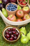 Trug of summer fruit. Trug of harvested summer fruit including: blueberries, cherries, apples, pears, strawberries, plums Royalty Free Stock Images