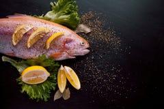 Truite fraîche et ingrédients pour préparer des plats de poisson sur la table noire Photos libres de droits
