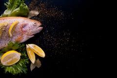 Truite fraîche et ingrédients pour préparer des plats de poisson sur la table noire Photographie stock