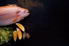 Truite fraîche et ingrédients pour préparer des plats de poisson sur la table noire, l'espace libre pour le texte du côté droit Images libres de droits