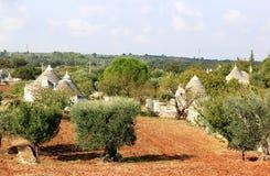 Trulli在Alberobello,意大利附近的果树园 库存图片