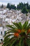 Trulli屋顶在阿尔贝罗贝洛 免版税库存图片