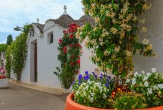 Trulli contiene la calle en Alberobello, Italia Imagen de archivo libre de regalías