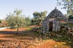 Trulli en olijfboom royalty-vrije stock afbeeldingen