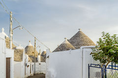 The Trulli houses of Alberobello in Apulia in Italy. The Trulli of Alberobello in Apulia in Italy. These typical houses with dry stone walls and conical roofs stock images