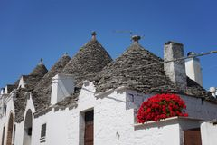Trulli houses in Alberobello with red geranium flowers. A row of traditional white plaster trulli houses with cone-shaped slate tile roofs with some red geranium royalty free stock images