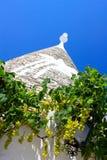 trullo виноградин Стоковые Изображения RF