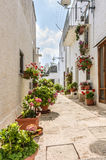 Trullo in alberobello street. A beautiful Alberobello street with colorful flowers and roses with the typical trullo house on background Royalty Free Stock Image