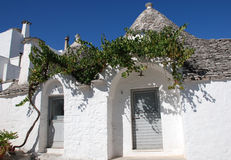Trullo Doors with Grape Vine Stock Image
