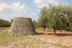Trullo and Olive Tree Stock Photography