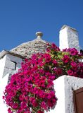 Trullo Roof with Pink Flowers 3 Stock Photo
