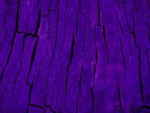 Truly amazing photo of a closeup wood texture under a ultra glowing purple light Stock Photos
