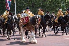 Trumma hästen och handelsresanden, med monterad musikbandridning bakom, deltagandet i gå i skaror den militära ceremonin för färg arkivbilder