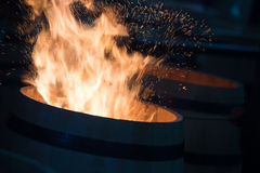 Trummadanande i Bordeaux Wineyard Royaltyfri Fotografi