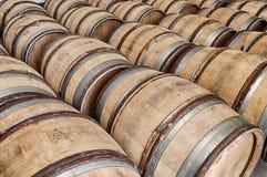 Trummor av vin i Chablis royaltyfri foto