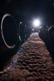 trummor förvara i källare mörk wine Arkivfoto