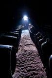 trummor förvara i källare mörk wine Arkivbild