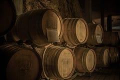 Trummor i winekällare Fotografering för Bildbyråer