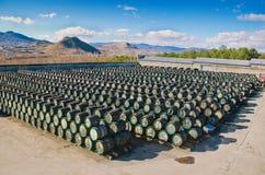 Trummor med wine Royaltyfri Fotografi