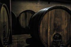 Trummor mycket av druvor precis efter skörden i Barolo Italien arkivfoton