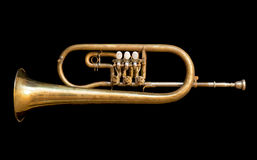 Trumpet 01 Royalty Free Stock Photography