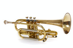Free Trumpet Stock Photos - 11513583