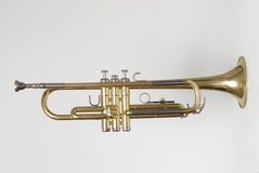 Trumpet 2 royalty free stock image