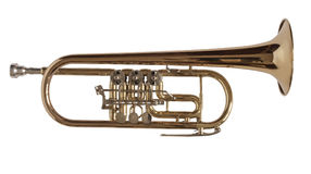 Trumpet. Golden brass trumpet used for orchestras Royalty Free Stock Photos