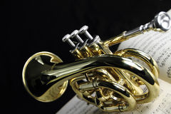 Free Trumpet Royalty Free Stock Photo - 22212395