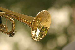 Trumpet. Against blurred background Stock Photography