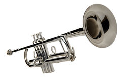 Free Trumpet Royalty Free Stock Photography - 3102607