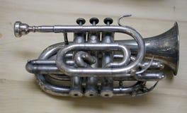 Trumpet Fotografering för Bildbyråer