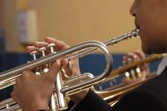 trumpet Arkivfoton