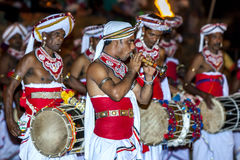 A Trumpet Blower performs ahead of a group of Davul Players during the Esala Perahera in Kandy in Sri Lanka. Royalty Free Stock Photography