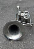 Trumpet on the ground Stock Images