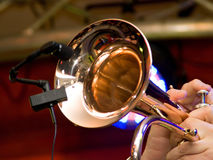 Trumpet and microphone. Close-up of trumpet and microphone in the hands of misician Royalty Free Stock Photography