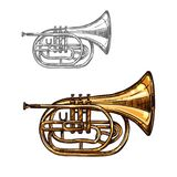 Trumpet or horn jazz music instrument sketch. Trumpet music instrument sketch. Horn or cornet of jazz orchestra equipment, wind brass musical instrument isolated Royalty Free Stock Photo