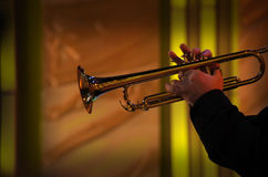 Trumpet Player. Concert in night club Stock Photos