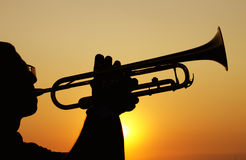 Trumpet Player. Silhouettes of trumpet player at sunset Royalty Free Stock Photo