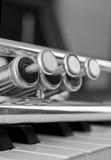 Trumpet segment closeup Stock Photo