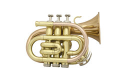 Trumpet. Under the white background Stock Photo