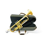 Trumpet vector illustration Royalty Free Stock Photo