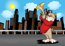Trumpeter Dog. Trumpeter Brown Puppy Dog standing and playing trumpet  melody, in city  background Royalty Free Stock Photography