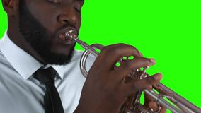 Trumpeter on green background. stock video