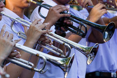 Trumpetspelare Fotografering för Bildbyråer
