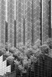 Trumpfturm Stockbilder