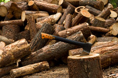 Truncate wood. Round old timbers ready to go in processing Royalty Free Stock Image