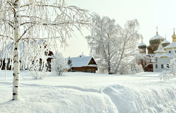 Trunk of bare hoary birch in deep snow on the background of orthodox monastery and houses at winter Stock Photography