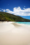 Trunk Bay. Wide white sand beach at Trunk Bay, St John stock photo